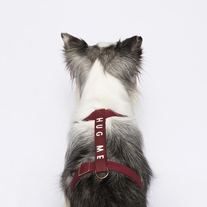 Thankyoustudios x Barker Label Harness(wine)